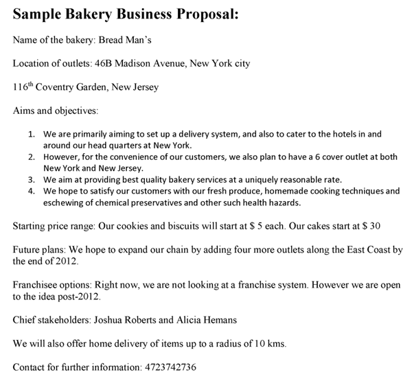business proposal template - Business Proposal Template
