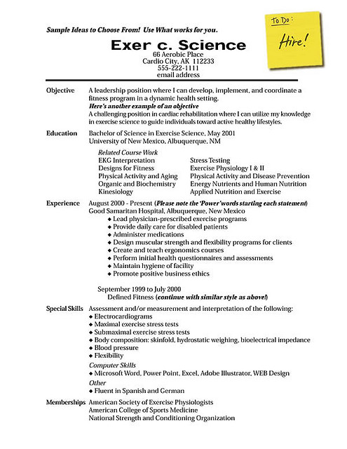 How To Write A Resume?  How To Write A Resume Profile