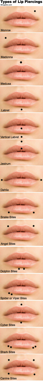 Lip Piercing Types Fotolip