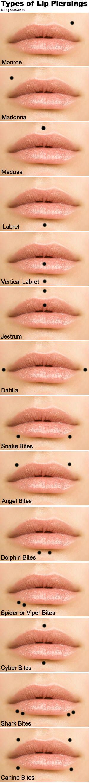 Lip Piercing Types