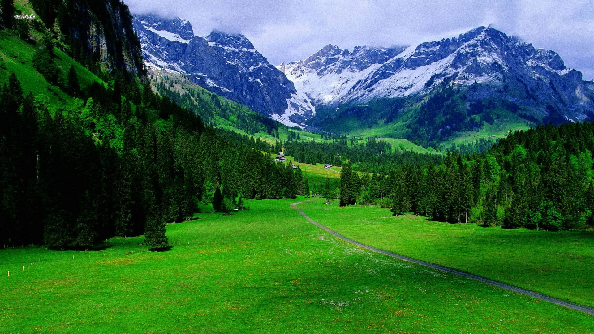 Nature Scenes Fotolip Com Rich Image And Wallpaper