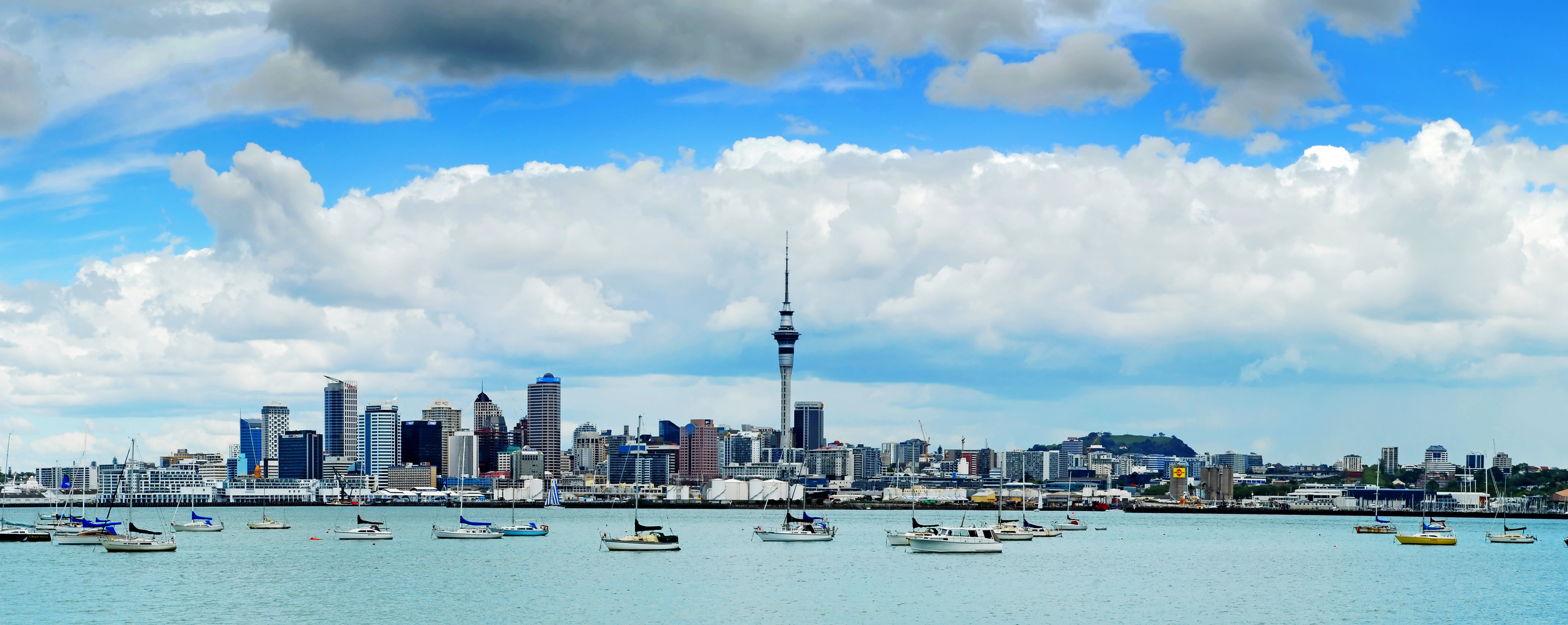 a beautiful city in new zealand  auckland