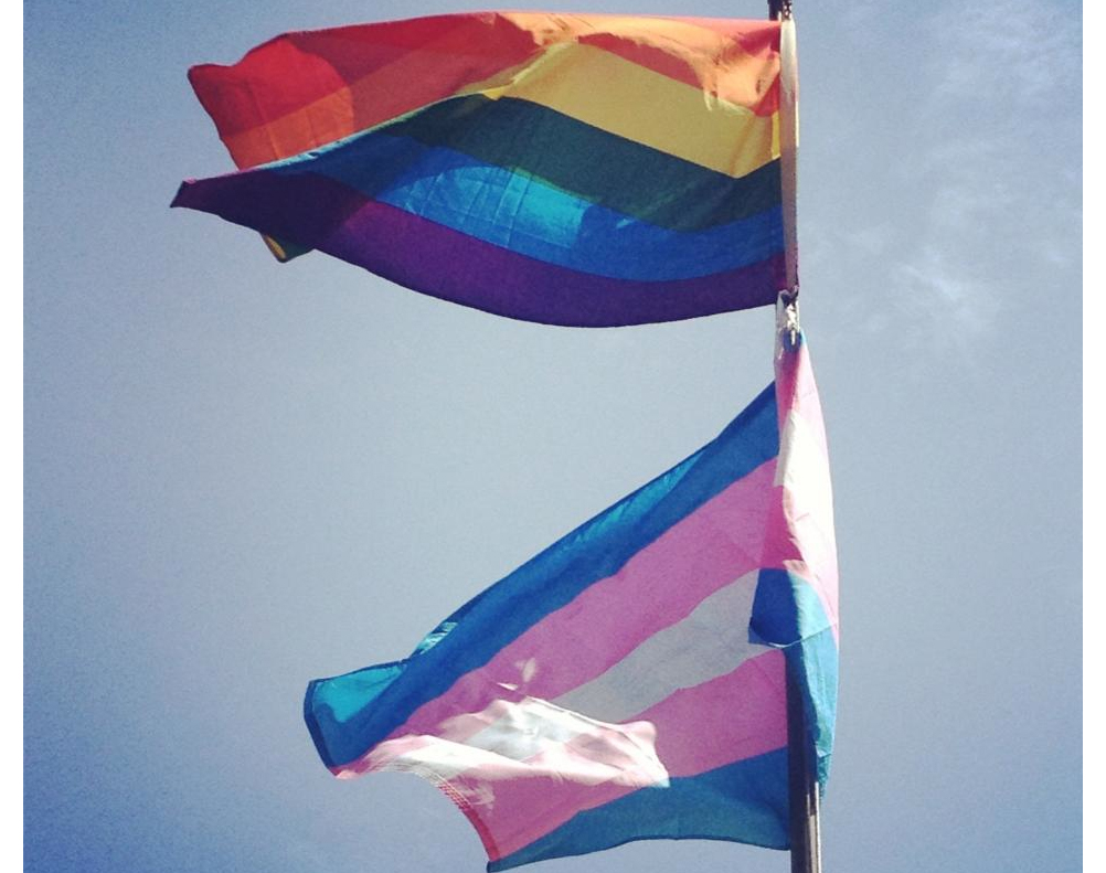 Trans Flag Fotolip
