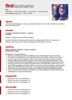 international cv template template - Resume With Picture Template