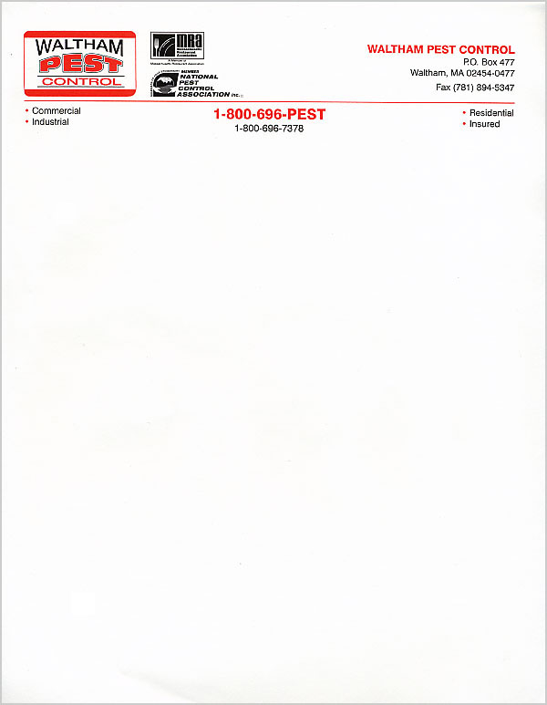 Letterhead Examples | Fotolip.com Rich image and wallpaper