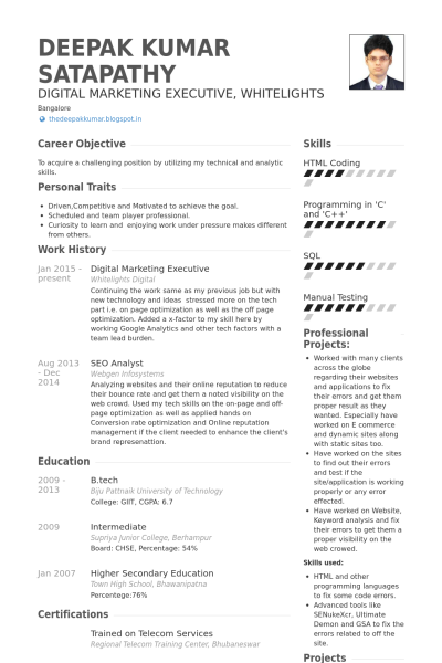 Fashion marketing manager sample resume