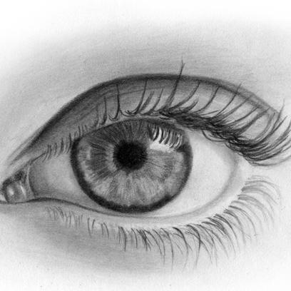 Pencil Drawings - Fotolip